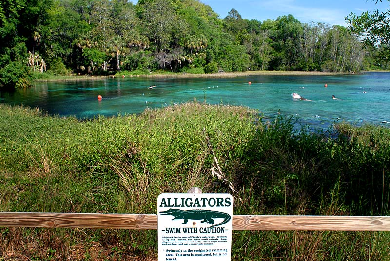 Rainbow River Florida Ocala Florida Arcadia Florida